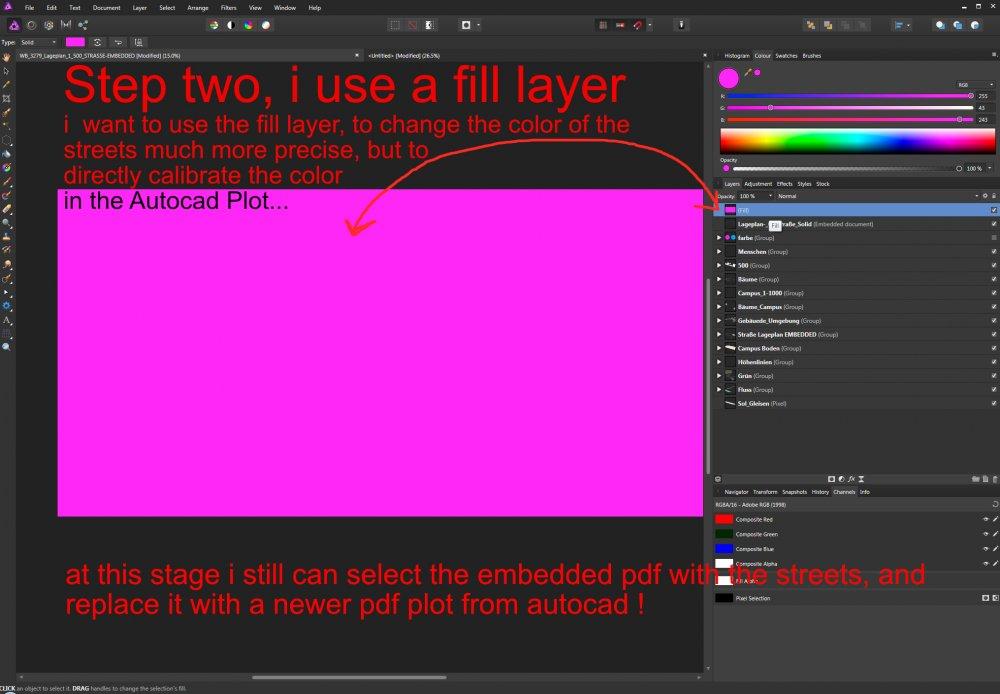 embedding pdfs 2.jpg