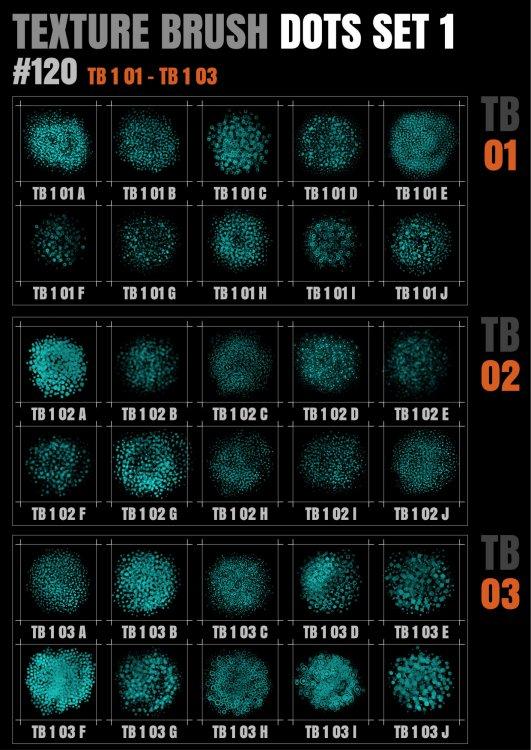 TB 1 DOTS 01-03@0.5x.jpg