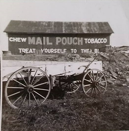 mail pouch tobacco barn on hess farm - by dee lewis .jpg