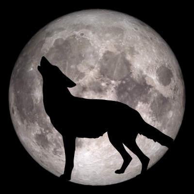 howl.jpg.2cead96d3bcd6fb3157d6eebd74d9fa6.jpg
