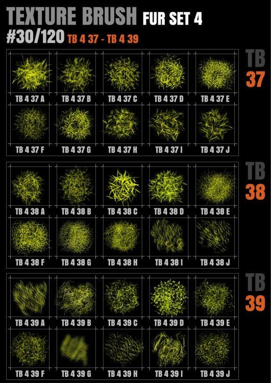 TB 4 FUR 37-39@0.5x.jpg