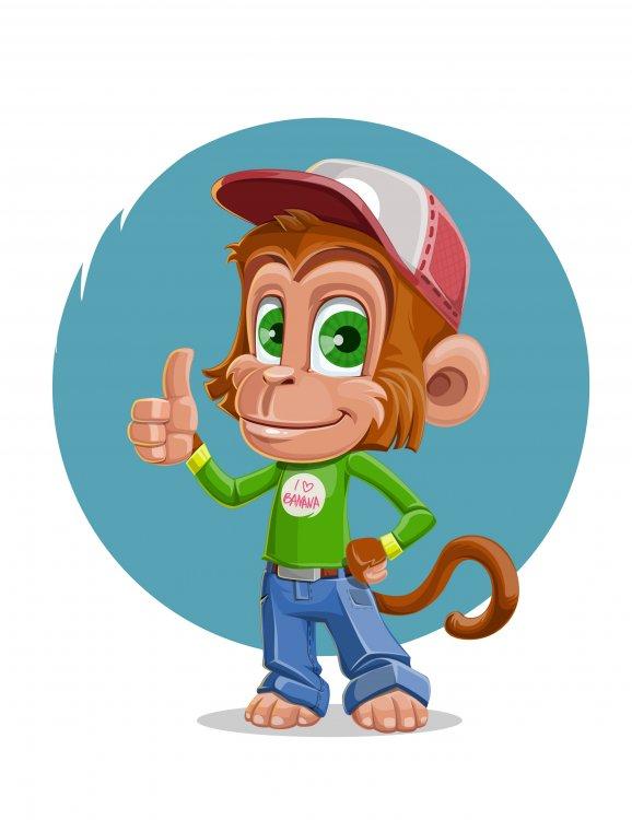 Monkey-3.jpg