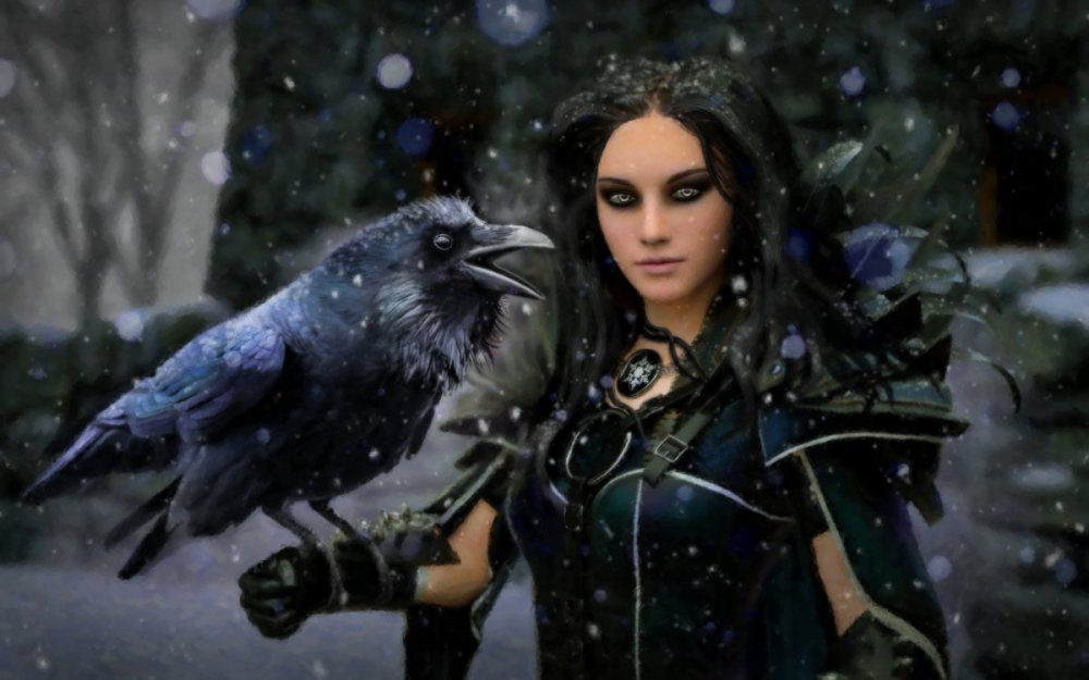 Raven_Snow_1200x.jpg