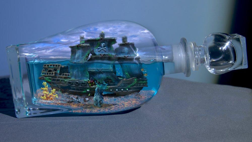 the bottle.jpg