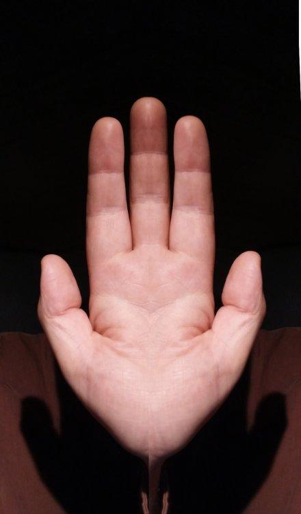 two half hands.jpg