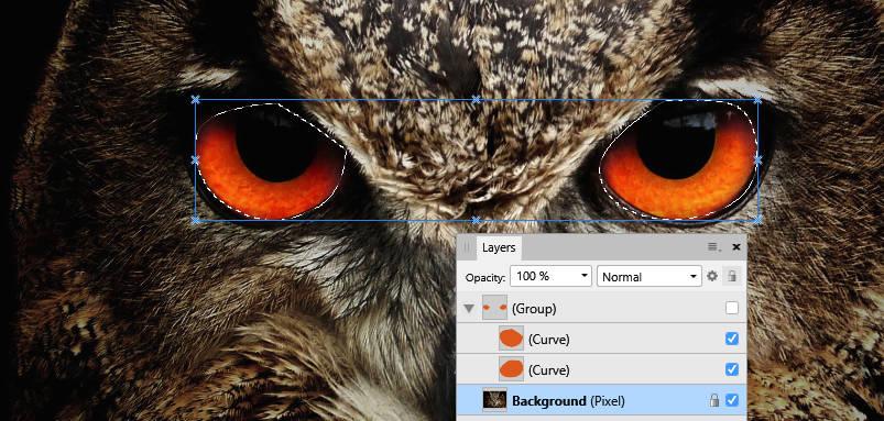 owl.jpg.15cd5c83f82d6f339d56aa37246d197f.jpg