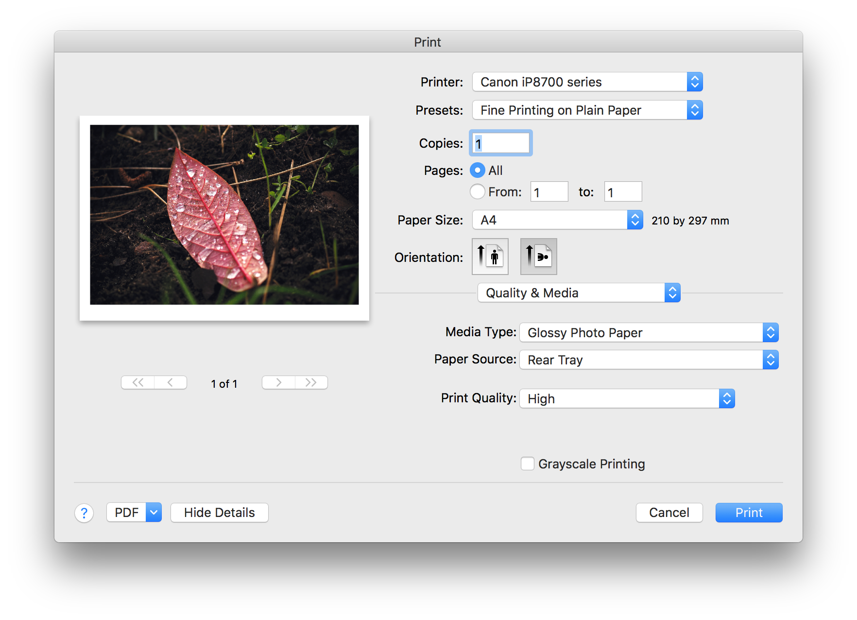 Printing looks horrible - Affinity on Desktop Questions (Mac and