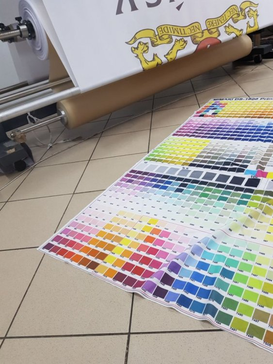 big palette.jpg