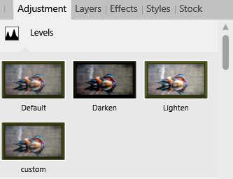 levels.jpg.1212e2bb3ac1ad9db451e4a8d517d984.jpg