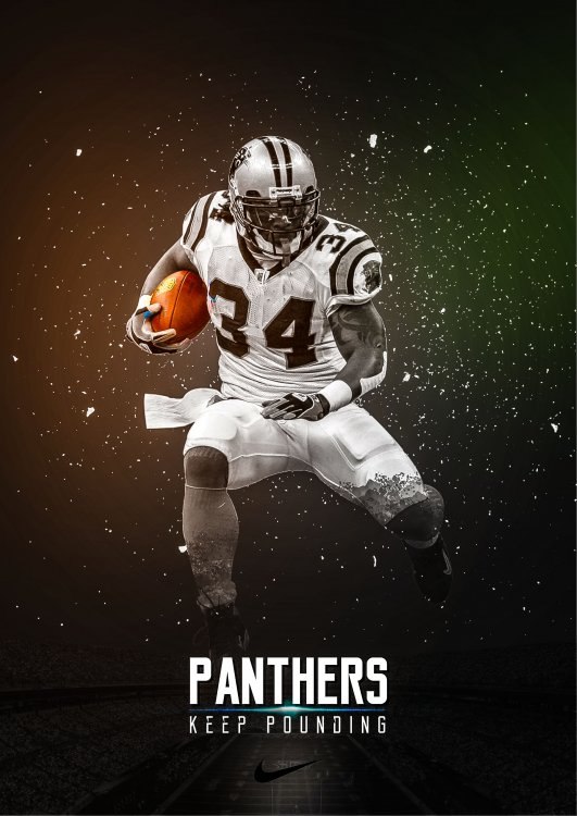 panthers_poster_ps.jpg