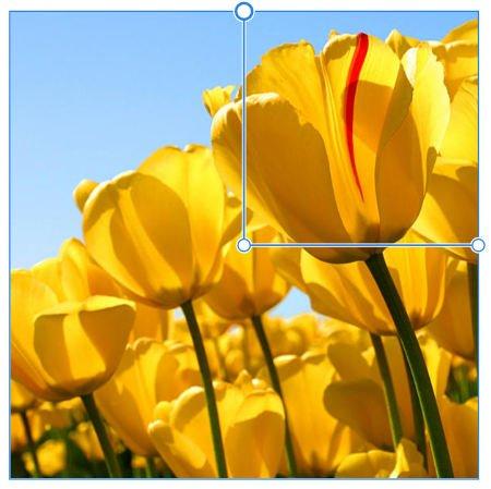 daffcon.jpg.11d7755383c5fdee5969c84998c7a514.jpg