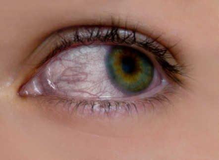 eye1.jpg.244ffaa9bdccde3ce36f0c5bb511f7ee.jpg
