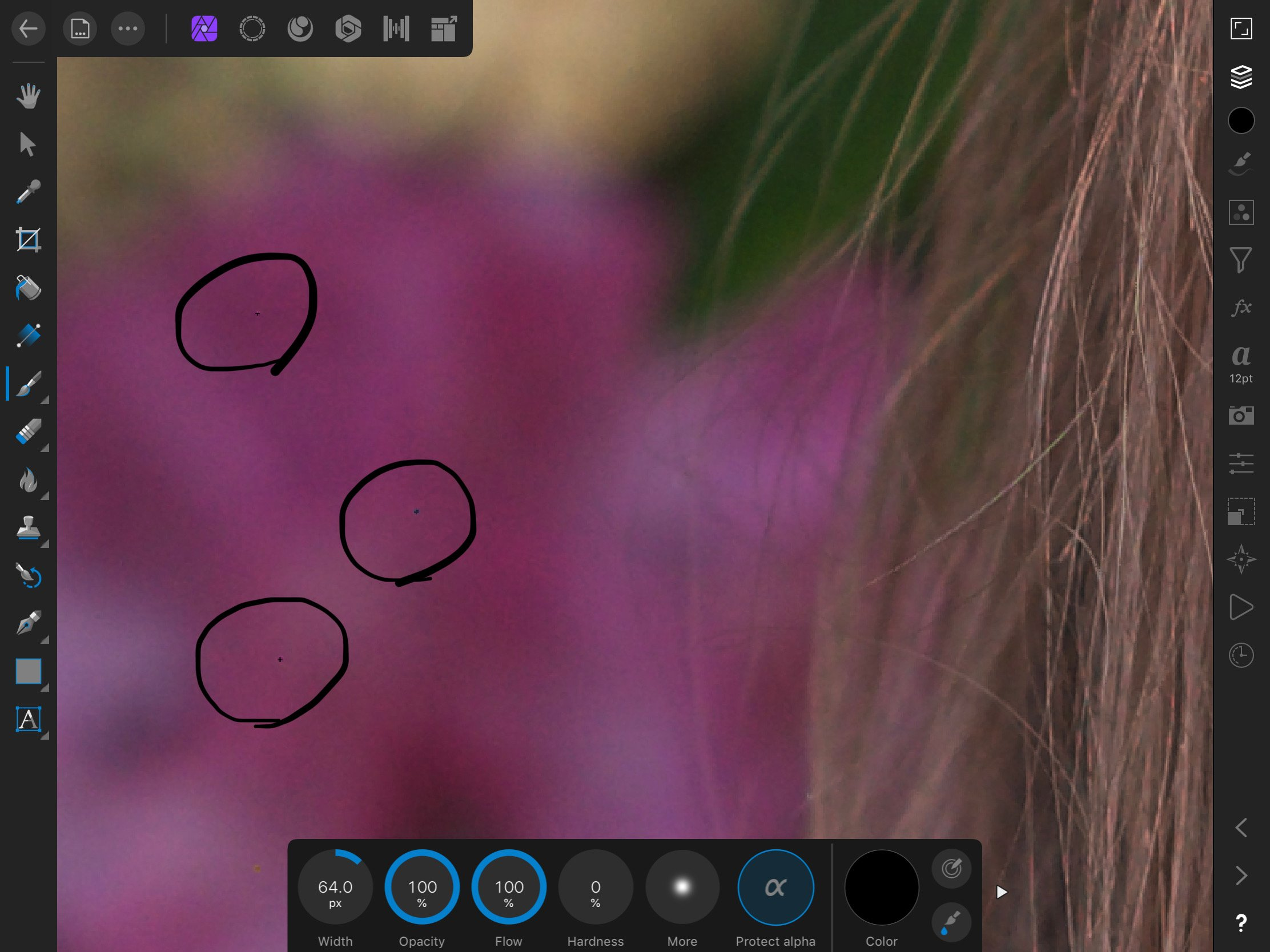 Dead pixel on raw image - Affinity on iPad Questions - Affinity | Forum