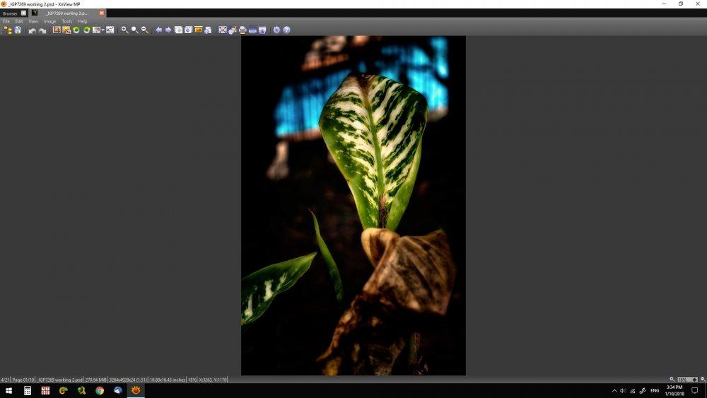 XnView-MP-Screen-Shot-2.jpg