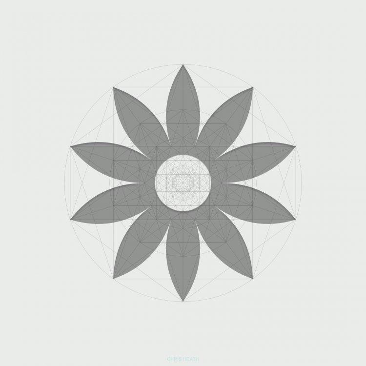 golden-ratio-11.thumb.jpg.c4f95a13634a6e718cd691f097eab2df.jpg