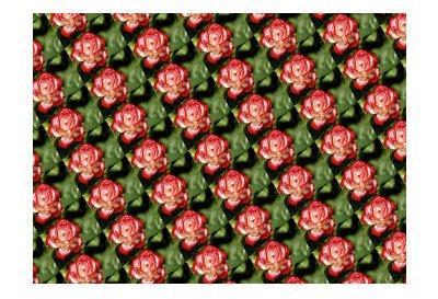 tiled.jpg.84eebf9ee52d27d082c495672736d738.jpg