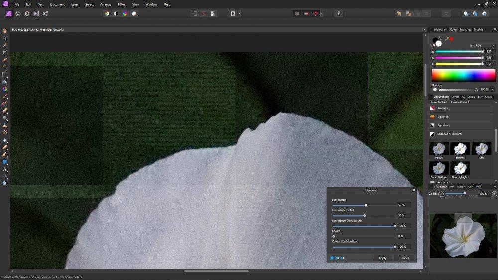 Denoise Filter Display.jpg