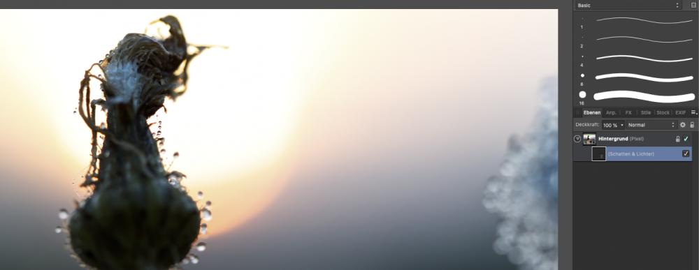 Bildschirmfoto 2018-12-05 um 12.23.00.png