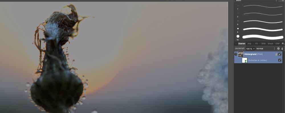 Bildschirmfoto 2018-12-05 um 12.24.01.png