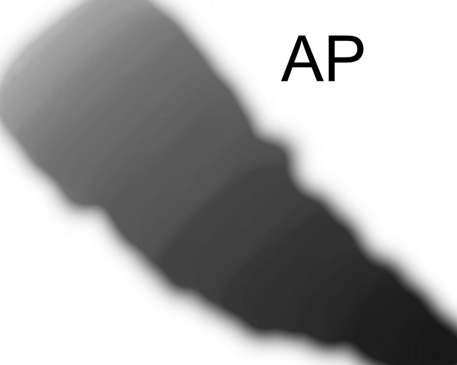 AP.thumb.png.d3fe29f91f8c5b2b1dea782a99d94dd8.png