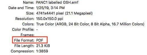1070357740_GCImagedata.jpg.4b1c668a34de7f3b5c173d59298b74d4.jpg