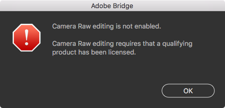 Adobe_Bridge_and_Camera_Raw_editing.png
