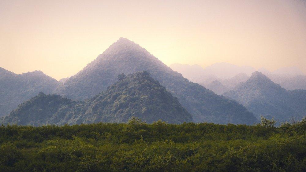 Vietnam-2724-2_1920.thumb.jpg.2818b2e0435d019280835a06a853d95e.jpg