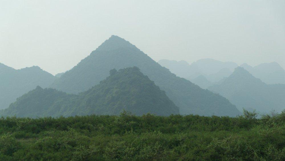 Vietnam-2724_1920.thumb.jpg.a065800b32526a5361bc38d81a1b6d81.jpg