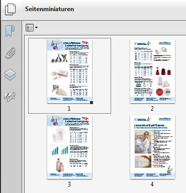 AP PDF-Export-AllPages.jpg
