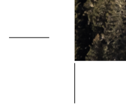 3mm.png