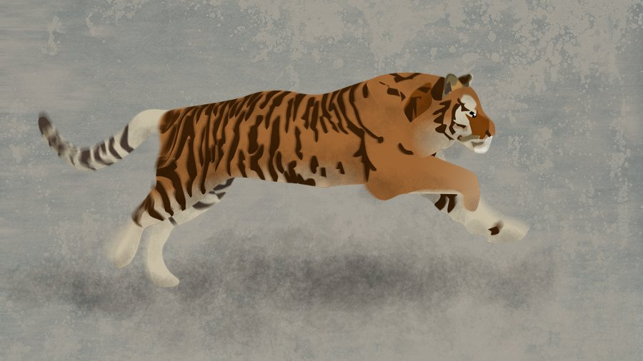 Tiger-03-1-4b.jpg.5fc7c5b68c2b22273981df7600045b13.jpg