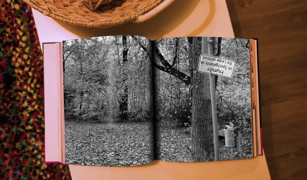 book3.thumb.jpg.4f2a1efe9e8e498d47947cd3f86c49f8.jpg