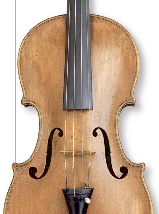 Double trim line_violin.jpg