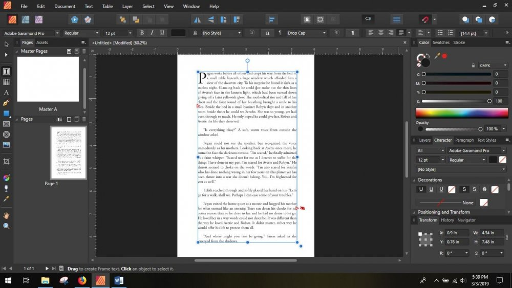 affinity publisher screen shot 2.JPG