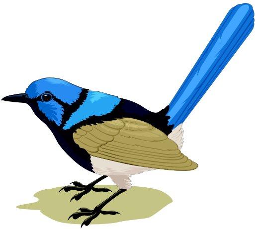 bluebird.jpg.4080b1b13b20aa0389c8e83b3653470a.jpg