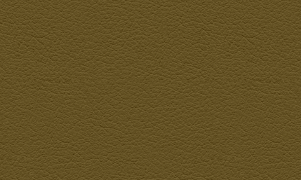 leather-background.png
