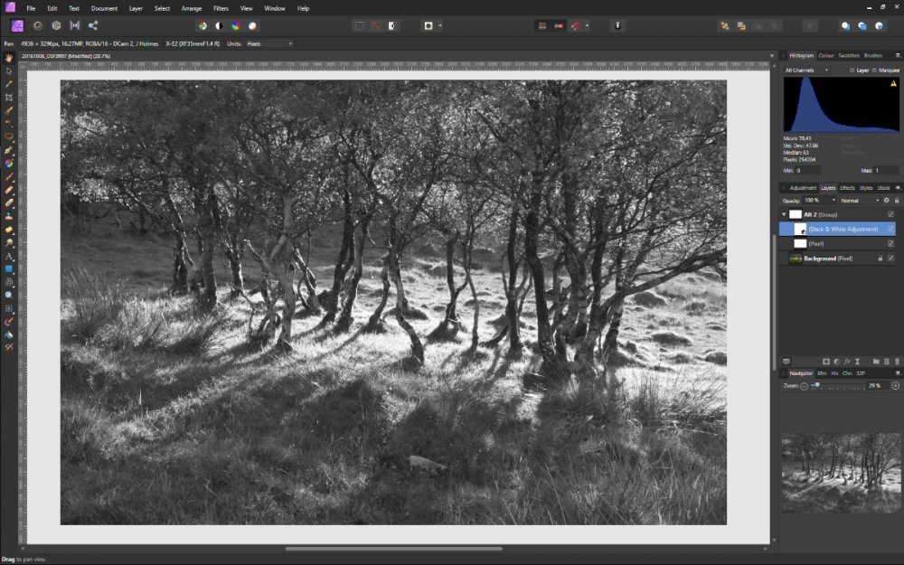 b+w - with local pixel layer.jpg