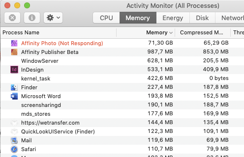 Memory leak? - Photo Bugs found on MacOS - Affinity | Forum