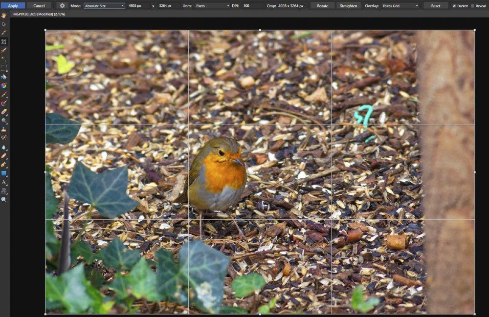 ImageA_Absolute_Size_crop.jpg