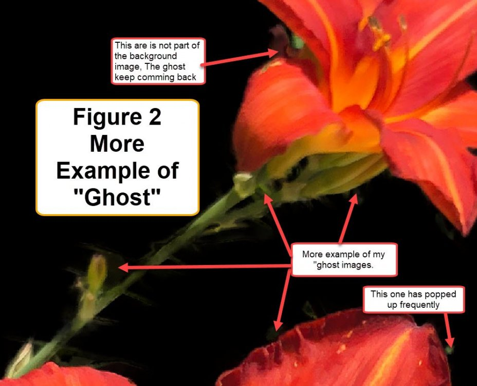 Fig 2 More Ghost Images 2019-08-10_18-43-23.jpg