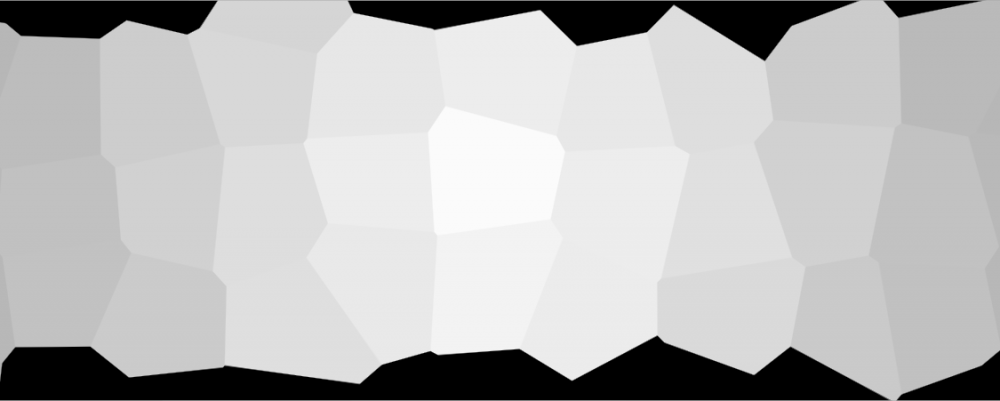 AP_Issue_Filter_Voronoi_002.png