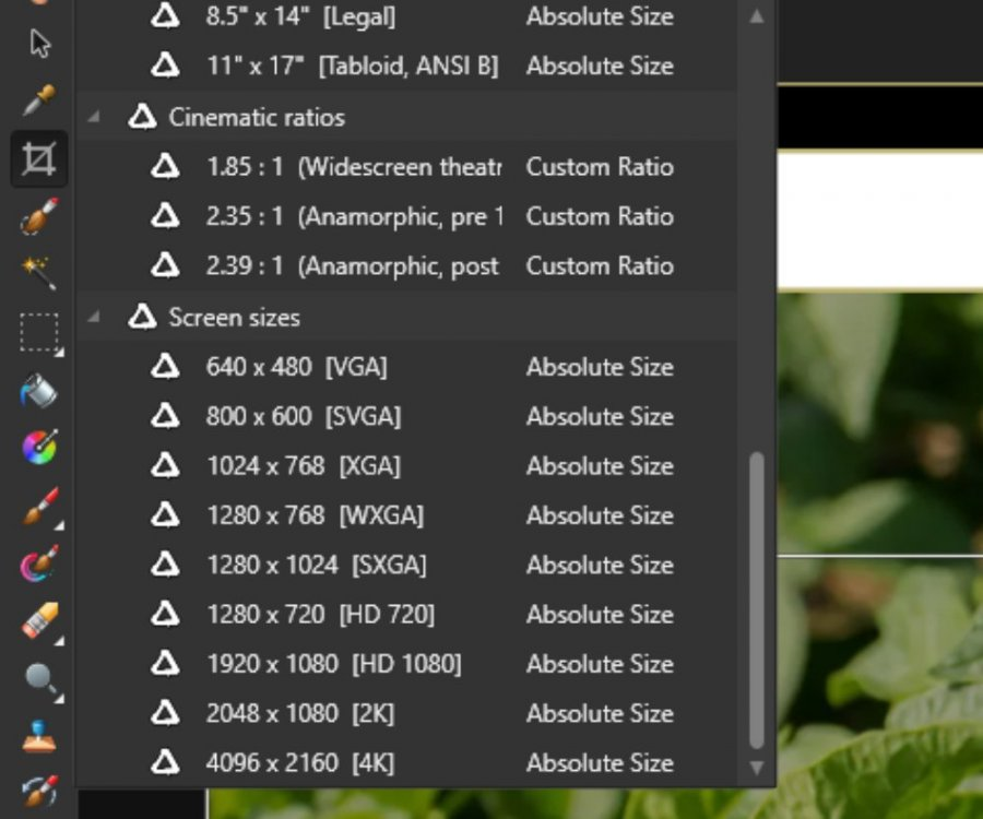example-crop-presets.jpg