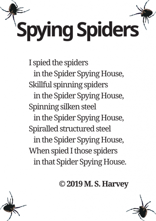 Spying Spiders (FILEminimizer).png