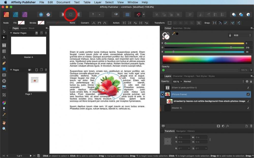edit_wrap_outline.jpg