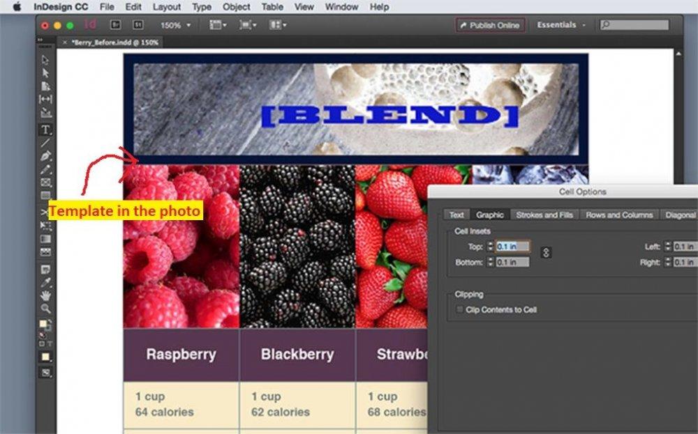adobe-indesign-screenshot Demo.jpg