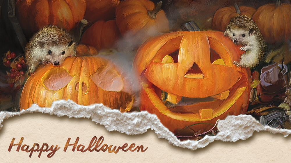 Wosven_citrouilles-halloween_torn3_.png.2fa2c0e12e5cdabd3a4c6250c91227d1.png