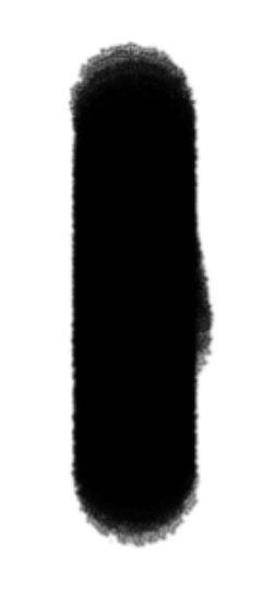 0AF3B15E-7E77-464E-B8CC-83A4E0DA13E2.jpeg.ba514aab559f37af4c6f6dde16f6c537.jpeg