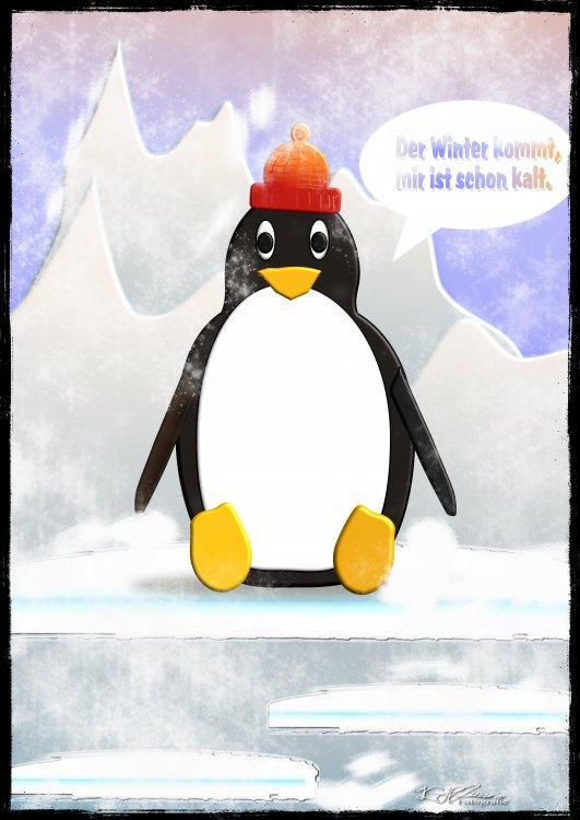 pinguine2.thumb.jpg.2f2a625bed58aaabc7eb775c8a9b835a.jpg