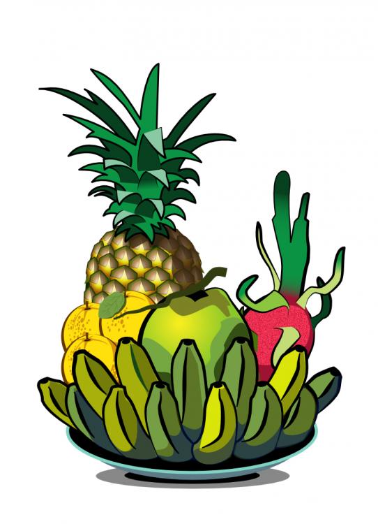 5_fruits_01.thumb.png.6953b1386e190cb0cdbb905b702dab40.png