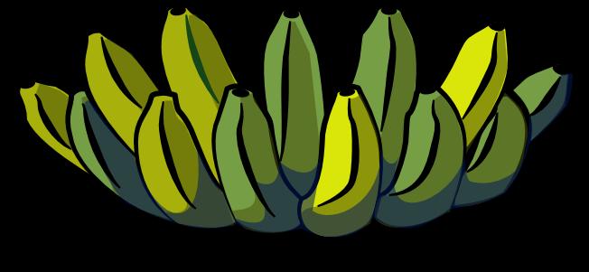 5_fruits_banana.png.24c647a46b6b55a9b9feba99f500fc4f.png